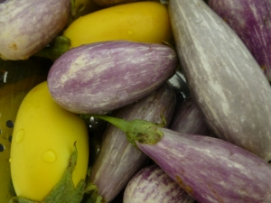Not a passing fad: I love slow cooked eggplant, especially these heirloom ones grown by my mum.